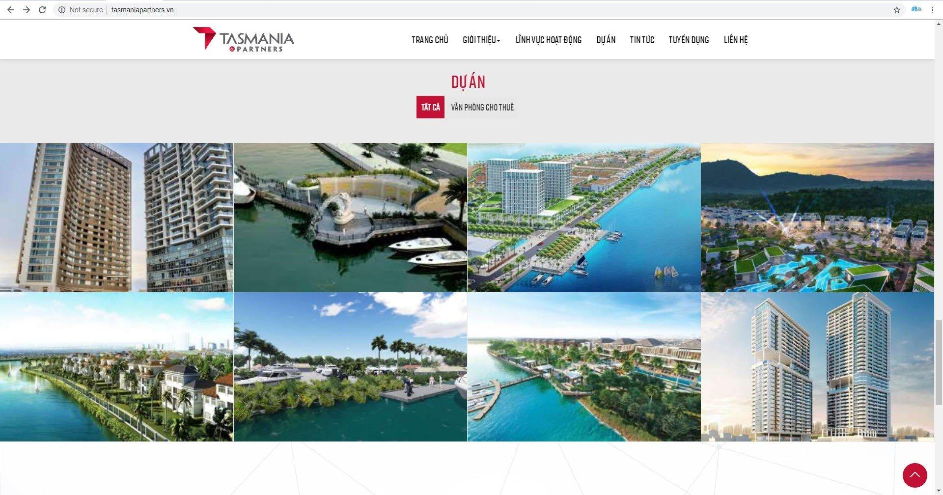 Giao diện website thương hiệu tasmaniapartners.vn - Hình 3